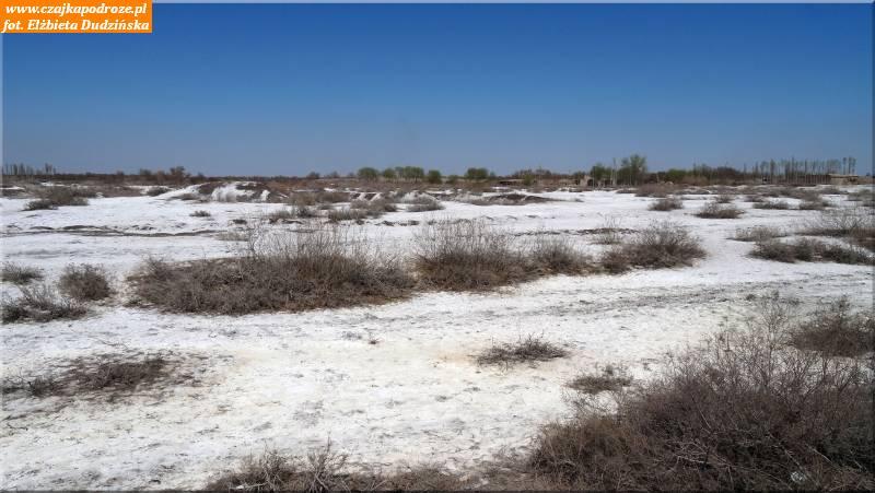 5. Sól napustyni Karakałpakstanu