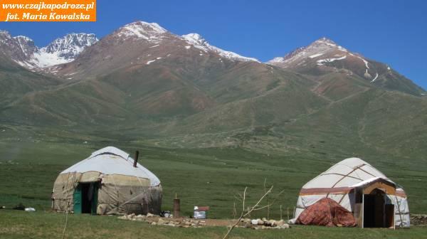 5. Jurty są charakterystycznym elementem kirgiskich krajobrazów. Dodzisiaj zachowały swoją pierwotną funkcję idla wielu kirgiskich rodzin służą jako letni dom.