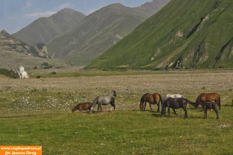 Jadąc Gruzińską Drogą Wojenną, mijając kolejne doliny iprzełęcze, podziwiając najsłynniejszy gruziński kurort narciarski Gudauri dociera się domiasteczka Stepancminda - dawniej zwanego Kazbegi leżącego upodnóża góry Kazbek.