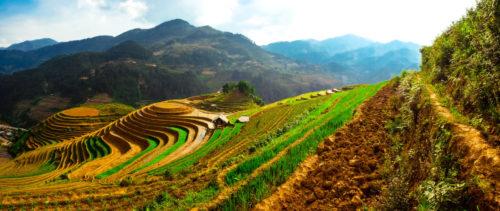 WietnamLaos