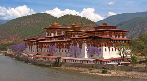 Punakha Dzong in Spring - Globzon